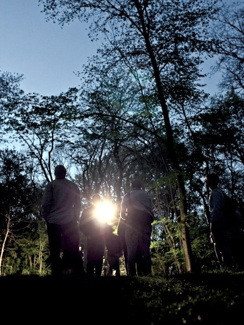 bat walk gabriel willow central park audubon sidetour
