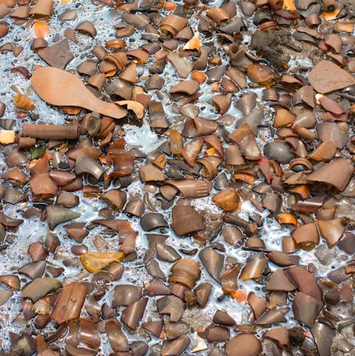 dead horse bay glass rives